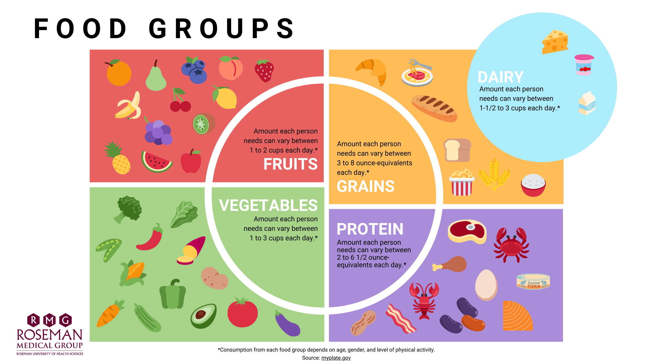 Food Groups. Fruits - Amount each person needs can vary between 1 to 2 cups each day. Grains - Amount each person needs can vary between 3 to 8 ounce-equivalents each day. Dairy - Amount each person needs can vary between 1-1/2 to 3 cups each day. Vegetables - Amount each person needs can vary between 1 to 3 cups each day. Protein - Amount each person needs can vary between 2 to 6-1/2 ounce-equivalents each day. Consumption from each food group depends on age, gender, and level of physical activity. Source: myplate.gov
